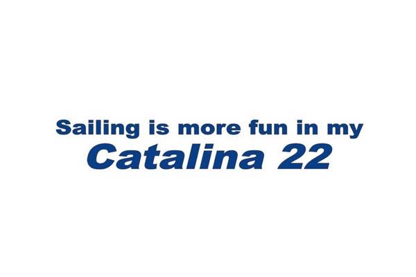 <span style= >Vinyl Transfer Lettering, C-22 Logo</span>